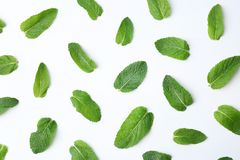 Flat lay composition with fresh green mint leaves. On white background Royalty Free Stock Photos
