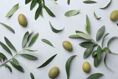 Flat lay composition with fresh green olive leaves. Twigs and fruit on light background stock photos