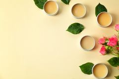 Flat lay composition with hygienic lip balms royalty free stock image