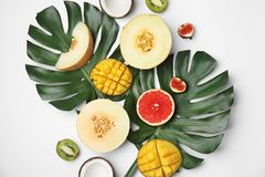 Flat lay composition with melon and other fruits royalty free stock images