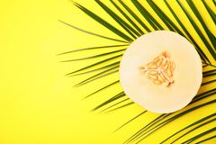 Flat lay composition with melon, tropical leaf a. Nd space for text on color background royalty free stock photography