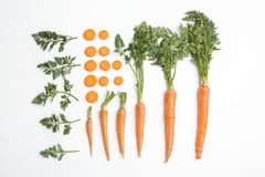 Flat lay composition with ripe fresh carrots. On white background royalty free stock photos