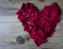 Flat lay composition with rose petals forming a heart leaving sp stock images