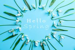 Flat lay composition with snowdrop flowers and inscription hello spring stock image