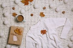 Flat lay composition with warm sweater stock photography