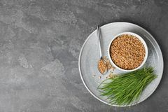 Flat lay composition with wheat grass and seeds on grey background. Space for text stock photography