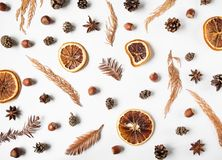 Free Flat Lay Creative Natural Background Of Winter Dry Forest Plants Parts, Anise Star And Dry Orange Slices On White Background. Top Stock Photos - 164426063
