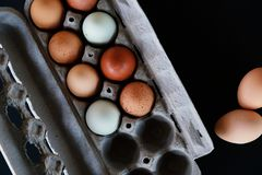 Flat lay of earthy tones of chicken eggs in carton on dark background. Earthy tones of chicken eggs on black background with copy space, view from above of food royalty free stock photography