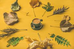 Flat-lay of espresso cup surrounded by dried fallen tree leaves stock photo