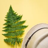 Flat lay of fern branch and some beach stuff on yellow. Summer flat lay of a fern branch and some beach stuff on yellow paper background royalty free stock images