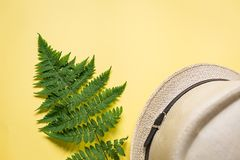 Flat lay of fern branch and some beach stuff on yellow. Summer flat lay of a fern branch and some beach stuff on yellow paper background royalty free stock photography