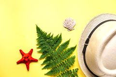 Flat lay of fern branch and some beach stuff on yellow. Summer flat lay of a fern branch and some beach stuff on yellow paper background stock photo