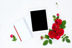 Flat lay floral frame with tablet, red and beige rose flower buds on white background. Royalty Free Stock Images