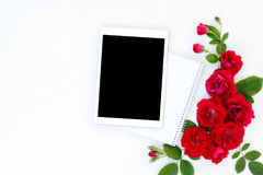 Flat lay floral frame with tablet, red and beige rose flower buds on white background. Stock Photos