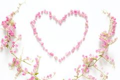Flat lay of floral heart made from pink flowers isolated on white background with pink flower border frame, top view. Flower creative composition royalty free stock image