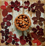 Flat lay frame of autumn crimson leaves with basket walnuts on a Royalty Free Stock Images