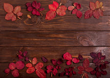 Flat lay frame of autumn crimson leaves on a dark wooden backgro Royalty Free Stock Images