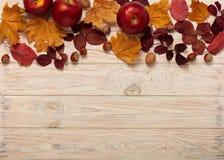 Flat lay frame of autumn crimson leaves, hazelnuts, walnuts and Stock Photo