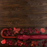 Flat lay frame of autumn crimson leaves and umbrella burgundy co Royalty Free Stock Images