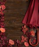 Flat lay frame of autumn crimson leaves and umbrella burgundy co Stock Photo