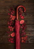Flat lay frame of autumn crimson leaves and umbrella burgundy co Royalty Free Stock Photography