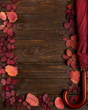 Flat lay frame of autumn crimson leaves and umbrella burgundy co Royalty Free Stock Photos