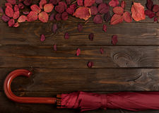 Flat lay frame of autumn crimson leaves and umbrella burgundy co Stock Images