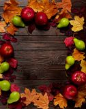 Flat lay frame of autumn crimson and yellow leaves, pears and ap Stock Photos