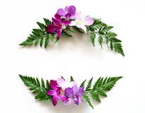 Frame wreath with orchids flower and green leaves. Flat lay frame wreath made of orchids flower and green leaves. Top view, copy space Stock Image