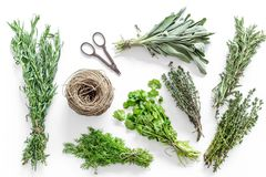Flat lay with fresh herbs and greenery for drying and making spices set on white kitchen background pattern. Flat lay with fresh herbs and greenery for drying royalty free stock images
