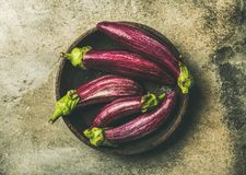 Flat-lay of fresh raw Fall harvest purple eggplants in bowl. Flat-lay of fresh raw Fall harvest purple eggplants or aubergines in wooden bowl over grey concrete Royalty Free Stock Images