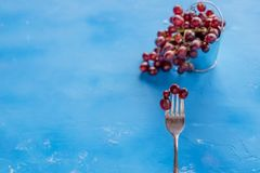 Flat lay with fresh red grape with water drop  on blue background. Silver fork with grapes.Top view with space. Fresh red grape with water drop  on white Royalty Free Stock Photography