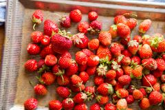 Flat lay freshly harvested strawberries, royalty free stock images