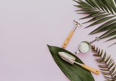 Flat lay garden items with green leaves stock photo
