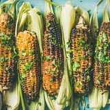 Flat-lay of grilled sweet corn with spices, square crop Stock Image