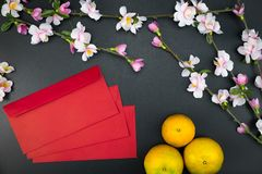 Flat lay holiday of Chinese new year red packet and of accessori. Es blossom on top and Lunar festival concept background, Other language means wealthy or rich royalty free stock photo