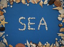 Flat lay. Inscription SEA from Stones, Frame of shells of various kinds on a blue background. Seashells and starfish on a dark blu. E background Royalty Free Stock Photography