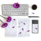Flat lay: keyboard, computer, to do list, black pen, tea journal, notes and pink, purple, violette, red Gerbera flower with petals royalty free stock images