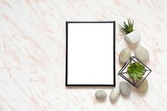 Flat lay marble desk with white empty frame for text, stones and succulents background Royalty Free Stock Image
