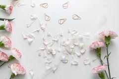 Flat Lay Of Pink And White Carnation Flowers And Petals Stock Photo