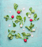 Flat lay of organic white and red radishes with green leaves. Top view Royalty Free Stock Photography