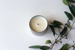 Flat Lay Overhead Image of Eucalyptus Branches With Leaves and a White Soy Candle. Photo taken overhead of eucalyptus branches with leaves and pods, next to a royalty free stock photos