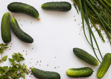 Flat lay pattern with cucumbers and greenery Royalty Free Stock Photos