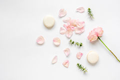 Flat lay with petals and macaroons on white background top view Royalty Free Stock Photo