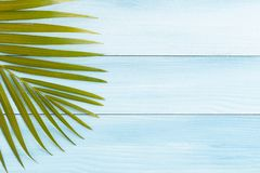 Flat lay photo coconut leaf on blue wood table , summer concept. Top view and copy space for montage your product stock photography
