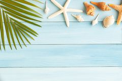 Flat lay photo coconut leaf and seashell on wood background , summer concept top view and copy space for montage your product royalty free stock photos