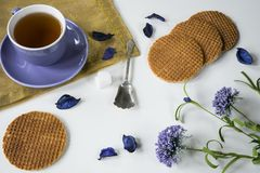 Cup of tea Dutch caramel cookie Stroopwafel in purple flowers, on white table royalty free stock photos