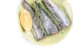 Flat lay with raw hake fish with lemon and rosemary above white background with copy space.  Stock Images