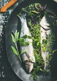Flat-lay of raw uncooked sea bass fish with herbs. Cooking fish dinner. Flat-lay of raw uncooked sea bass fish with fresh green herbs on dark plate over rustic stock photo