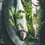 Flat-lay of raw uncooked sea bass with herbs, square crop. Cooking fish dinner. Flat-lay of raw uncooked sea bass fish with green herbs on dark plate over rustic stock images